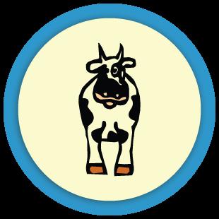 Où est la vache ?