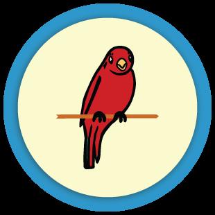 Des oiseaux sur un fil