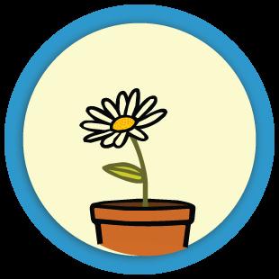 Sort the flowerpots