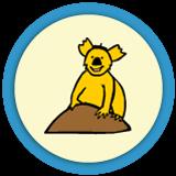 Le puzzle des Koalas