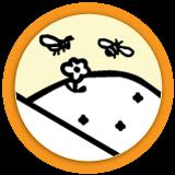 La ruche et les abeilles