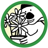 Daddy Koala's Flowerbed