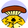 mushroomSong